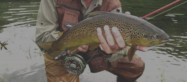 Je me perfectionne avec un guide de pêche
